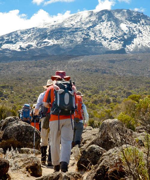 9 Days Climbing Lemosho Route
