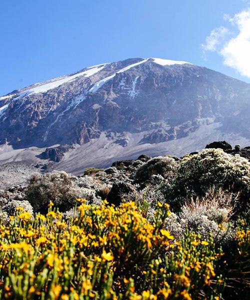 06-days-mount-kilimanjaro-marangu-route