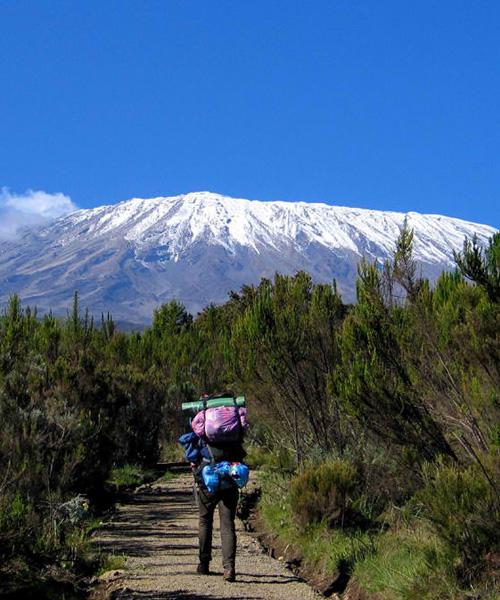 07 Days/ 06 Nights Mount Kilimanjaro Climb Marangu Route