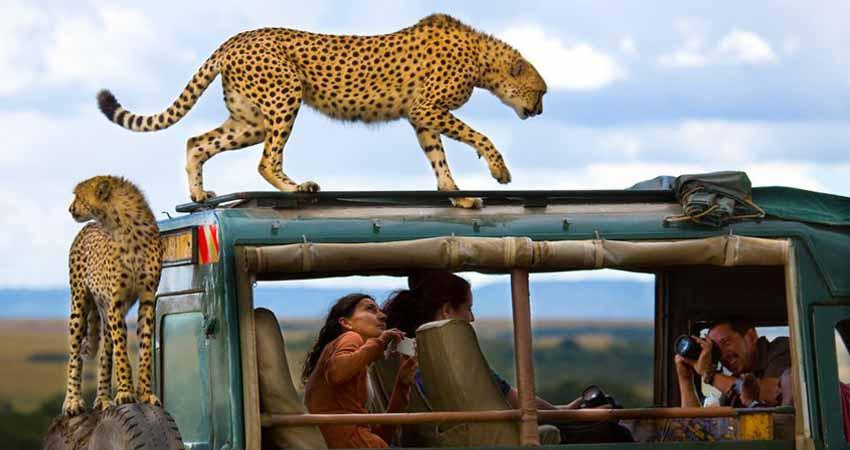 big-time-safaris-about-us