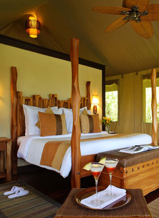 Lodge Safaris